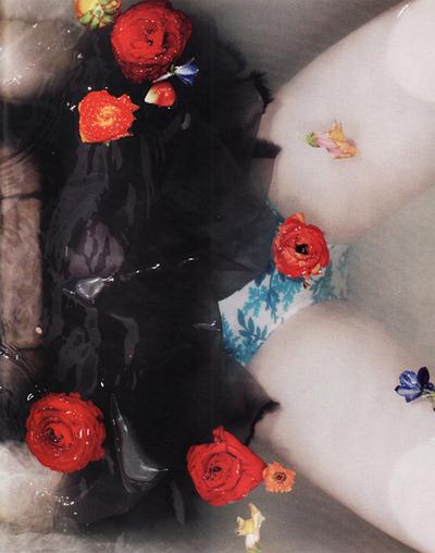 prato-de-flores